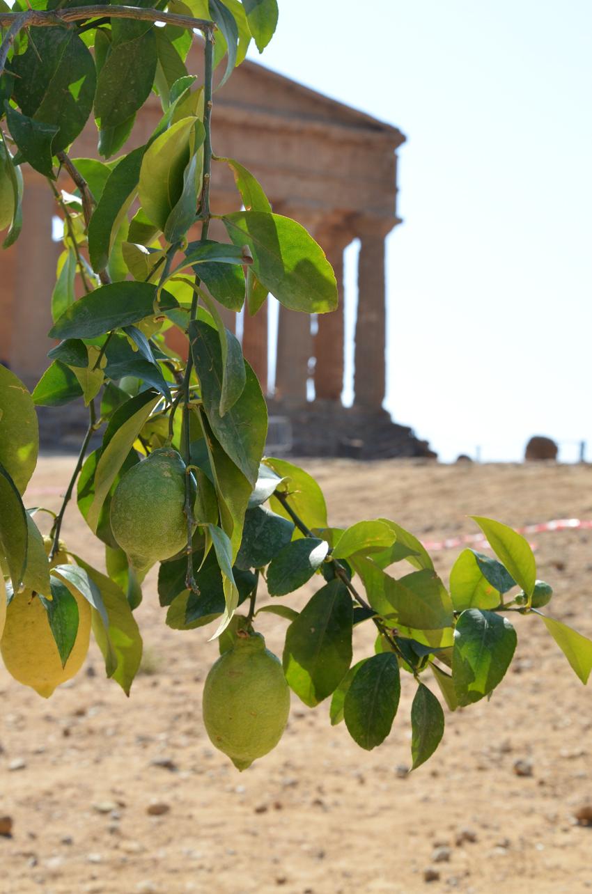 paesaggio-siciliano