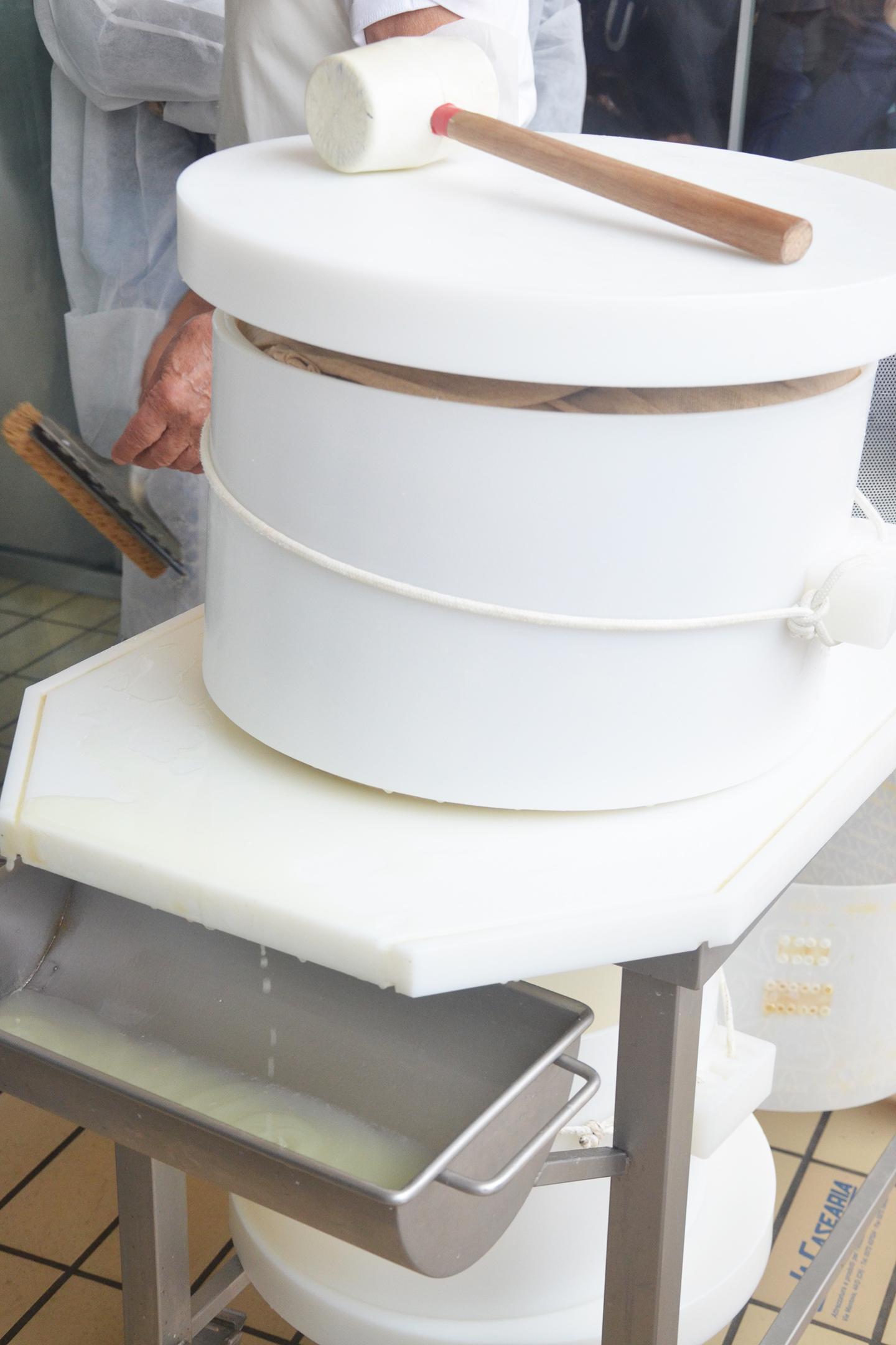 expo-grana-padano-milano-forme-lavorazione-dop-conservazione-cheese
