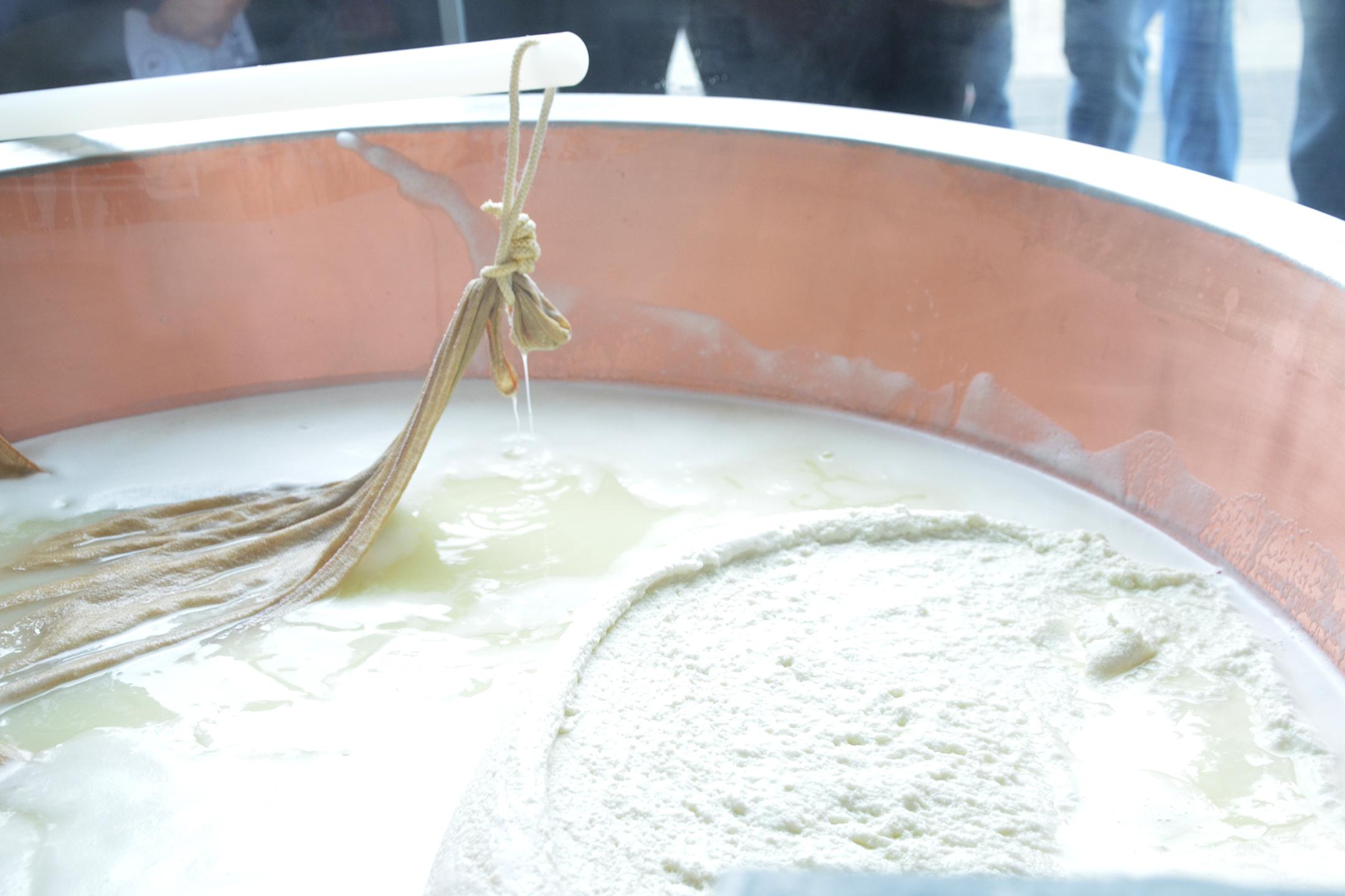styleshouts-expo-grana-padano-forme-lavorazione-dop-conservazione-cheese