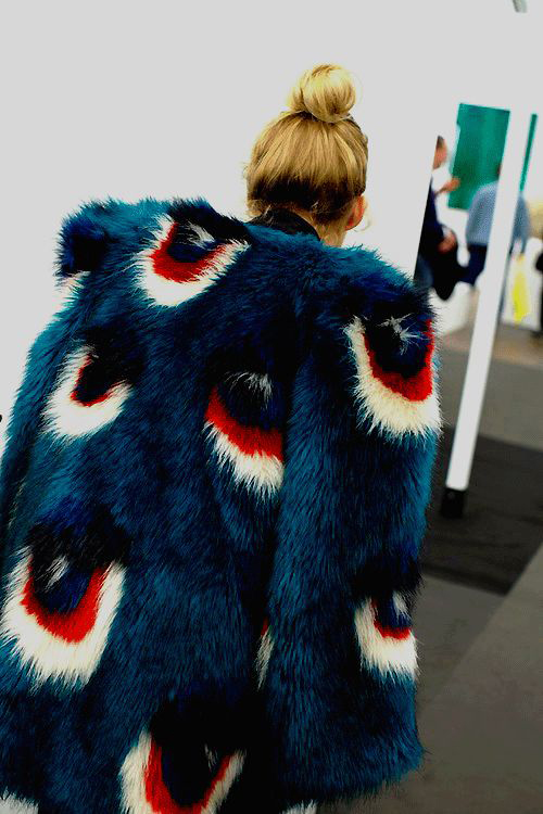 colored-coat-fur