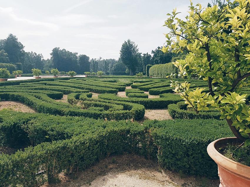 labirinto_alma_parma