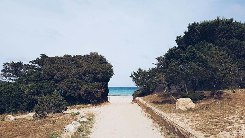 spiaggia_la_rondinara_corsica