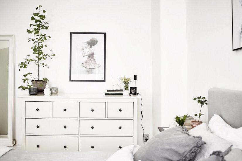 piante-fiori-camera-da-letto-5